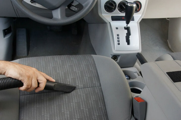 How To Get Rid Of Ants In Car Seat